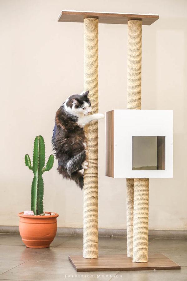 Arranhador para Gatos Torre