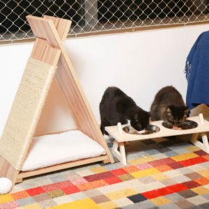 Comprar Comedouro para Gatos Valerie