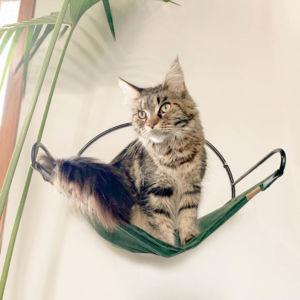 Comprar Rede para Gatos Volare Meia Lua